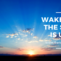 Wake up, the sun is up!